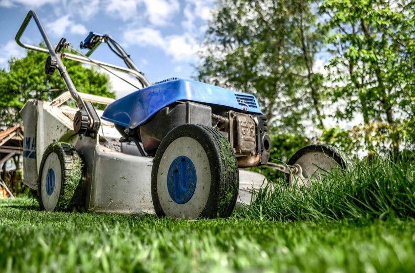 De vijf beste grasmaaiers